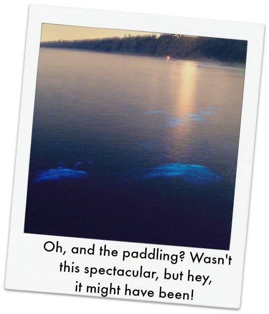 (Orig. image courtesy Flikr Creative Commons)