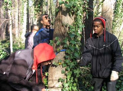 Upper School students removing Ivy from a tree at Duke Gardens