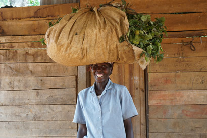"""Alphonsine is able to support her family harvesting patchouli in Rwanda"" says the caption from this 7 Virtues photo"