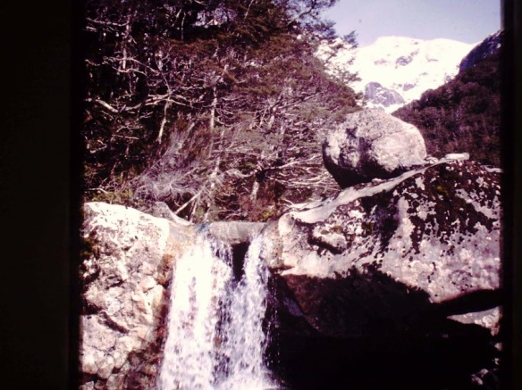 Near Arthur's Pass